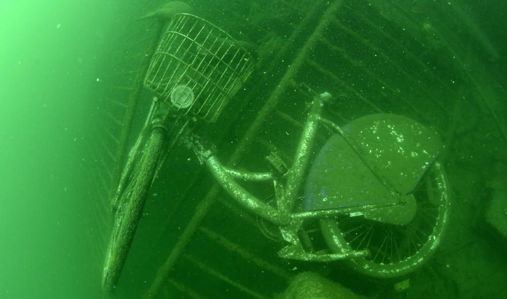 Vieux-Port - Photo Sea Shepherd