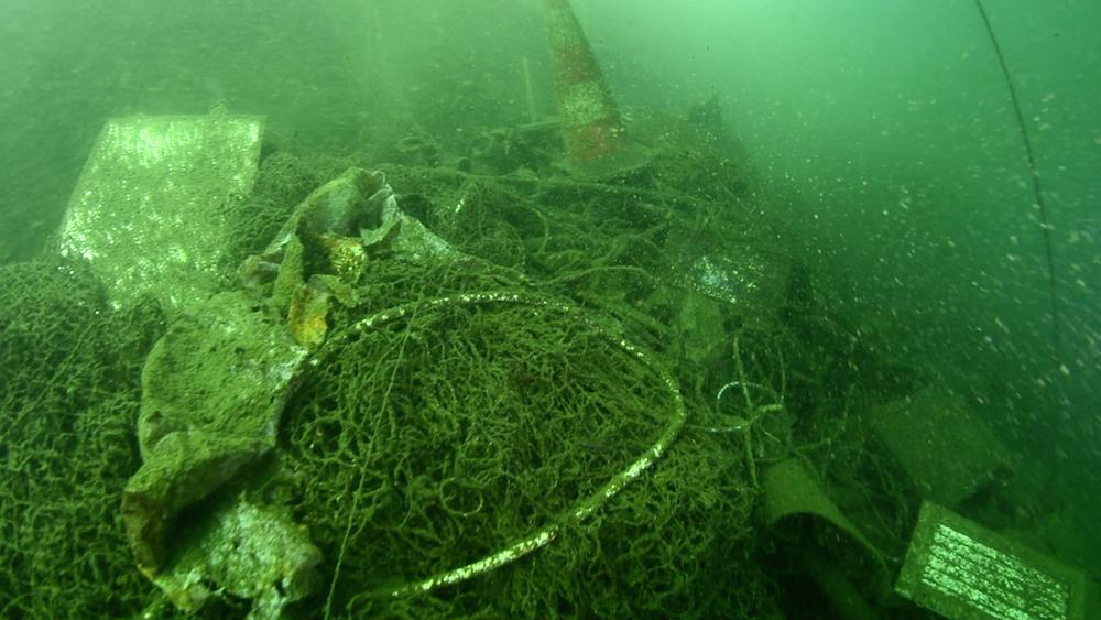 Filets de pêches - Vieux-Port - Photo Sea Shephred